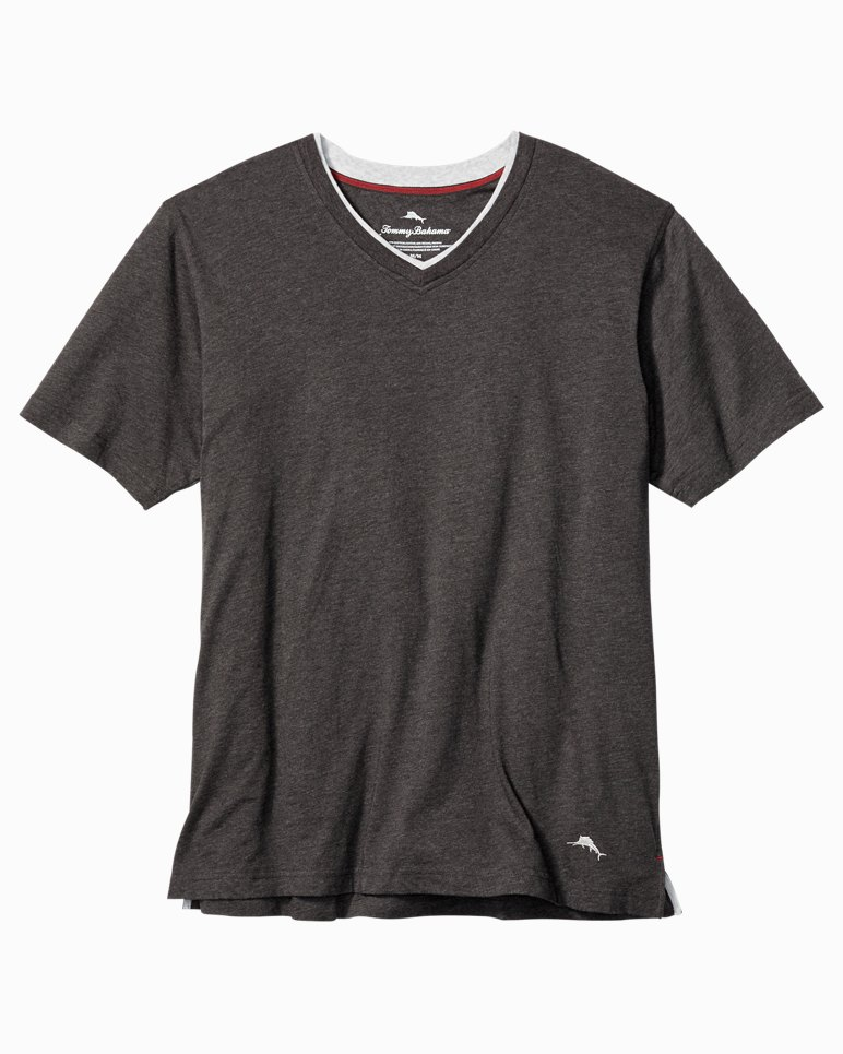 Main Image for Big & Tall V-Neck T-Shirt
