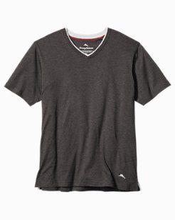 Big & Tall V-Neck T-Shirt