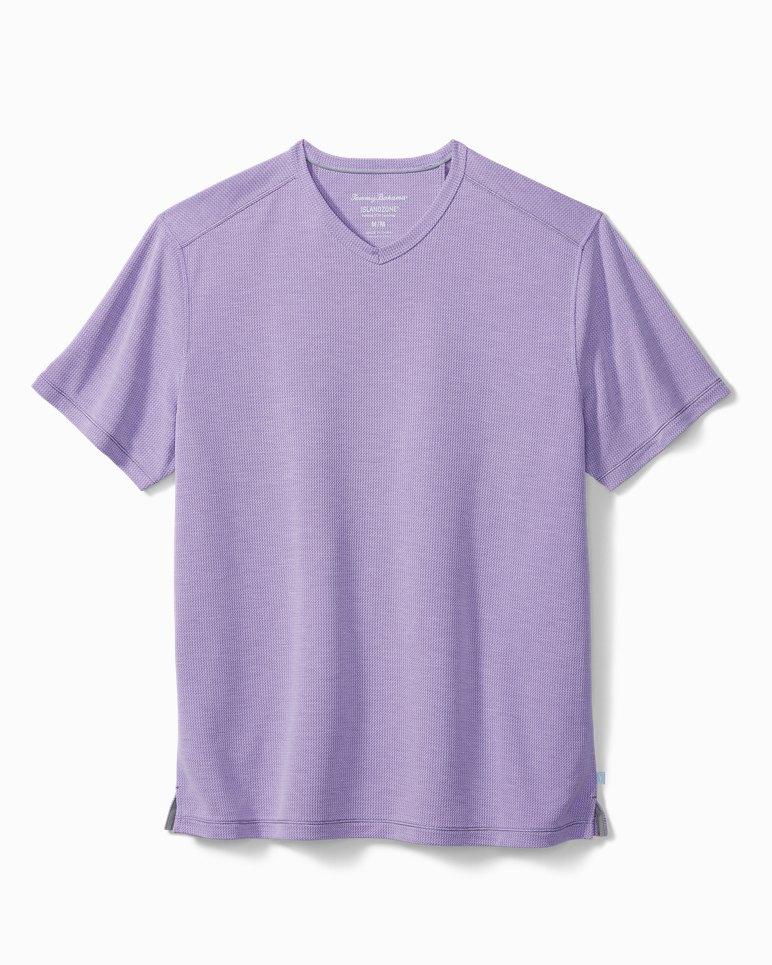 Main Image for Big & Tall Tropicool Paradise IslandZone® V-Neck T-Shirt