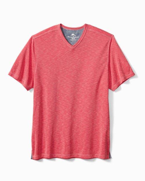 Big & Tall Palmetto Paradise V-Neck T-Shirt