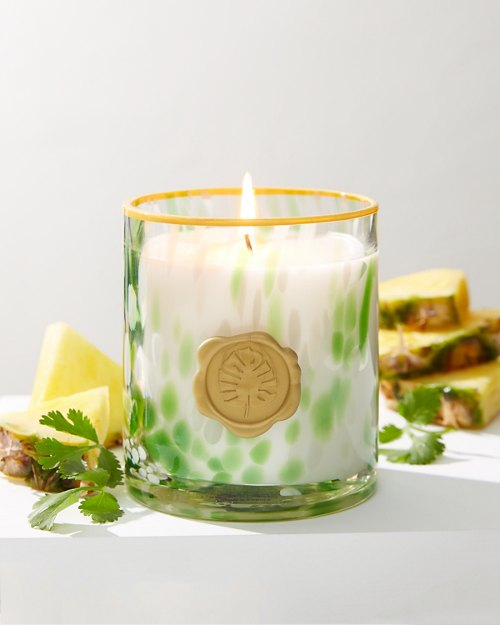 Tortoise Glass Candle With Seal & Ribbon