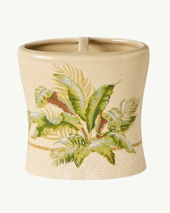 Palmiers Toothbrush Holder