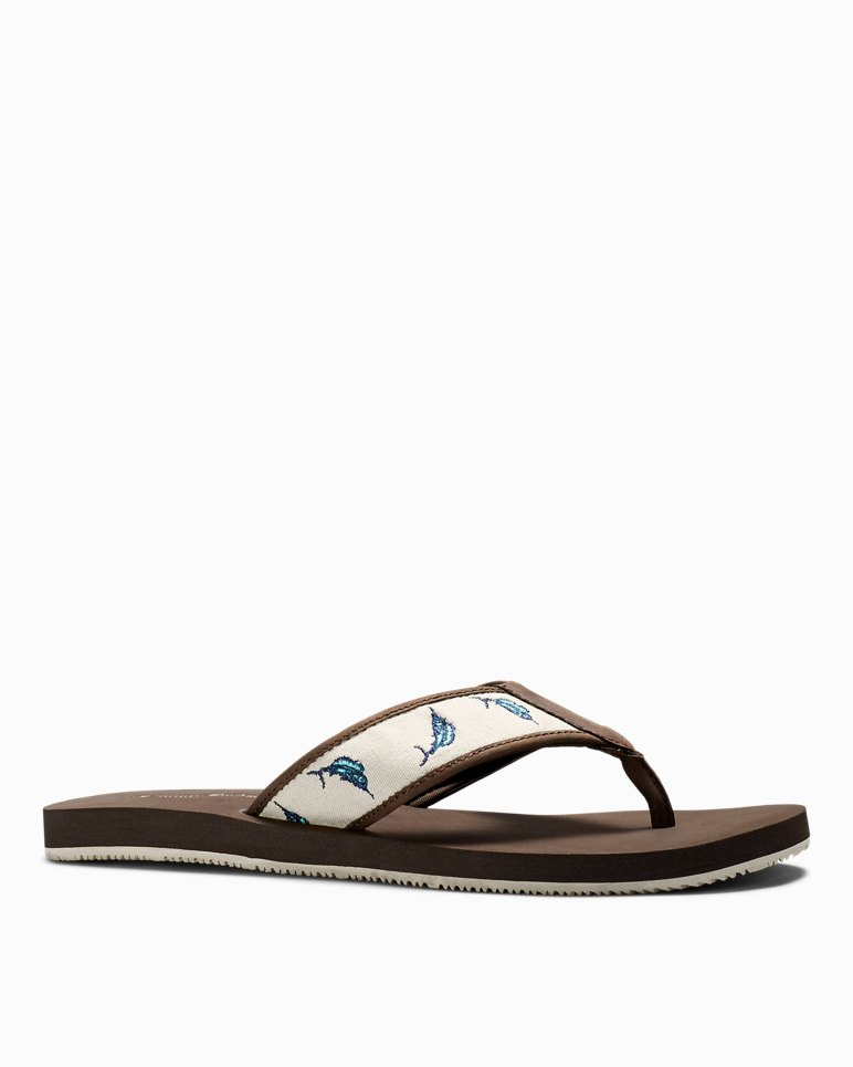 bb55ef386b7369 Main Image for Allegro Marlin Print Sandals