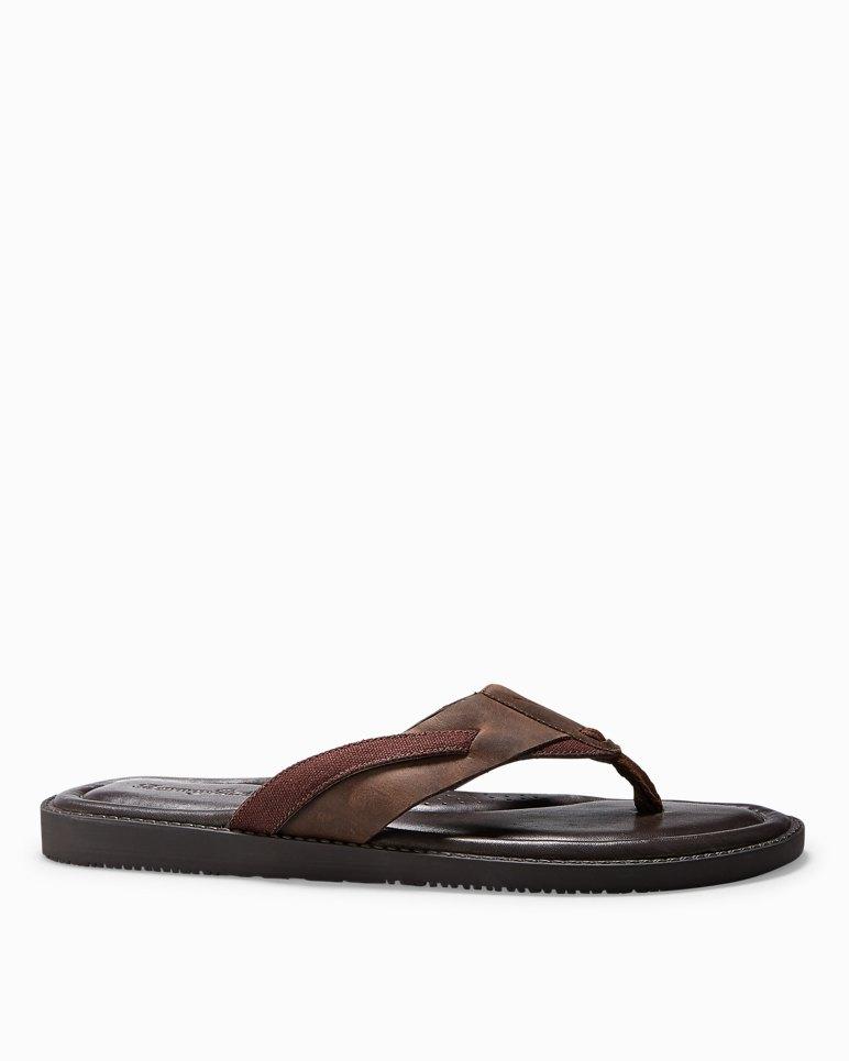 6dc69183ec03fe Main Image for Wexler Sandals