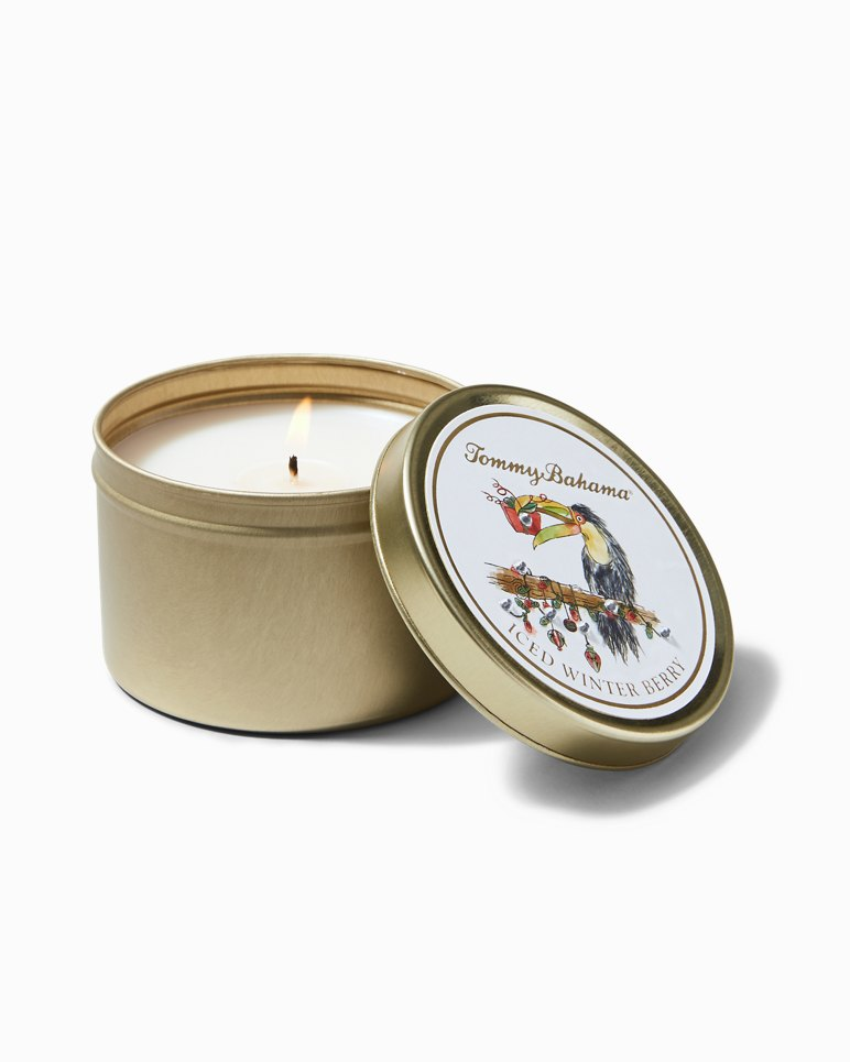 Main Image for Iced Winter Berry Holiday Toucan Candle Tin