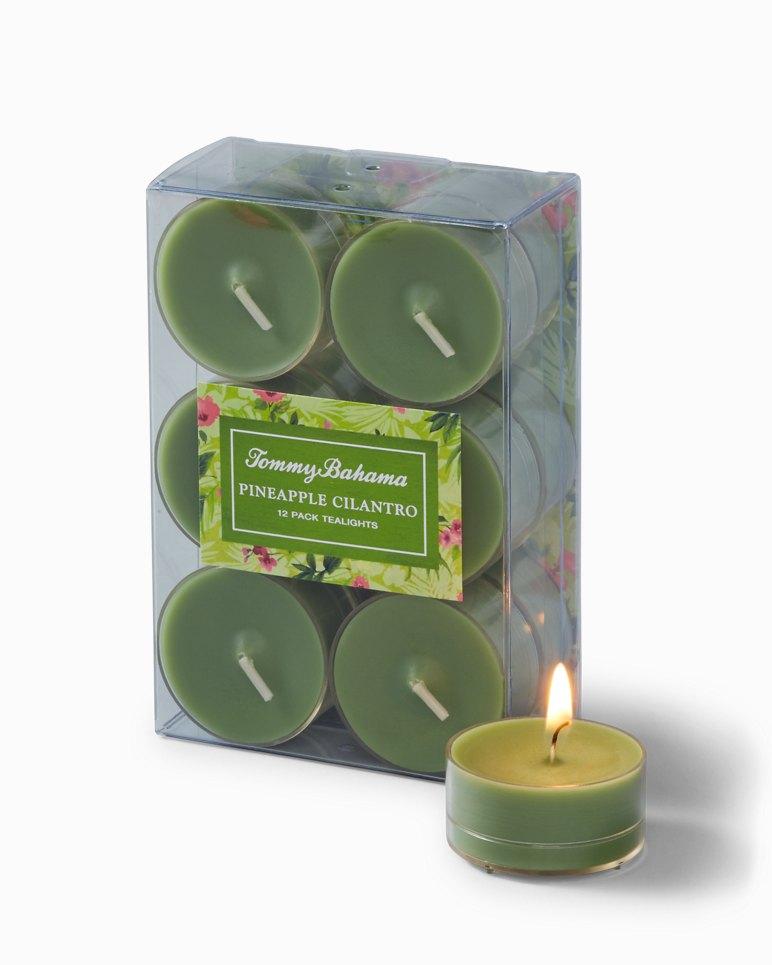 Paradise Blends Tea Lights - Set of 12 | Tuggl