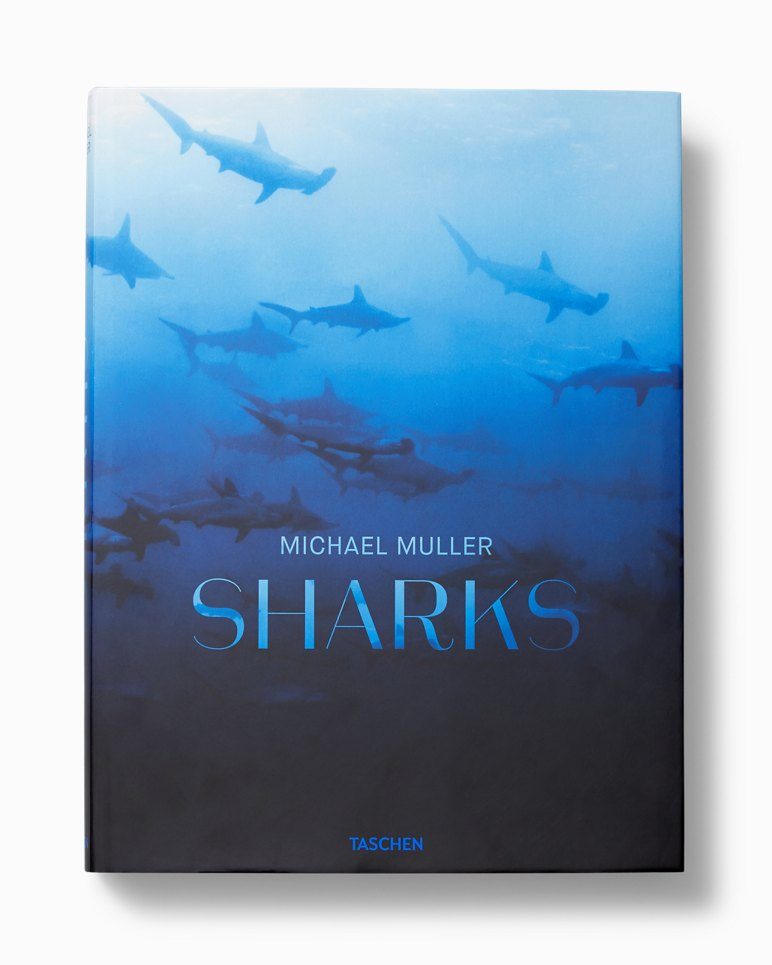 Sharks Book | Tuggl