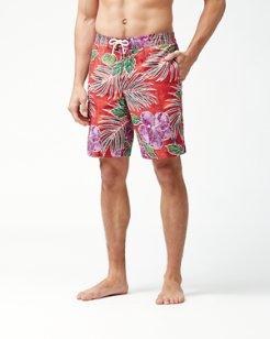 Baja Hibiscus Cove Board Shorts