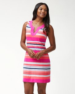 Bold & Bolder Shift Dress